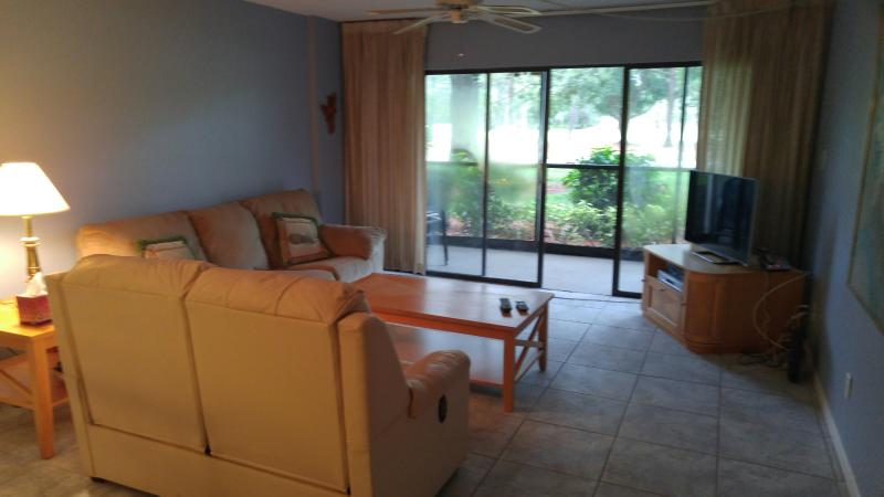 Living Area - Cove Cay Condo - Clearwater - rentals