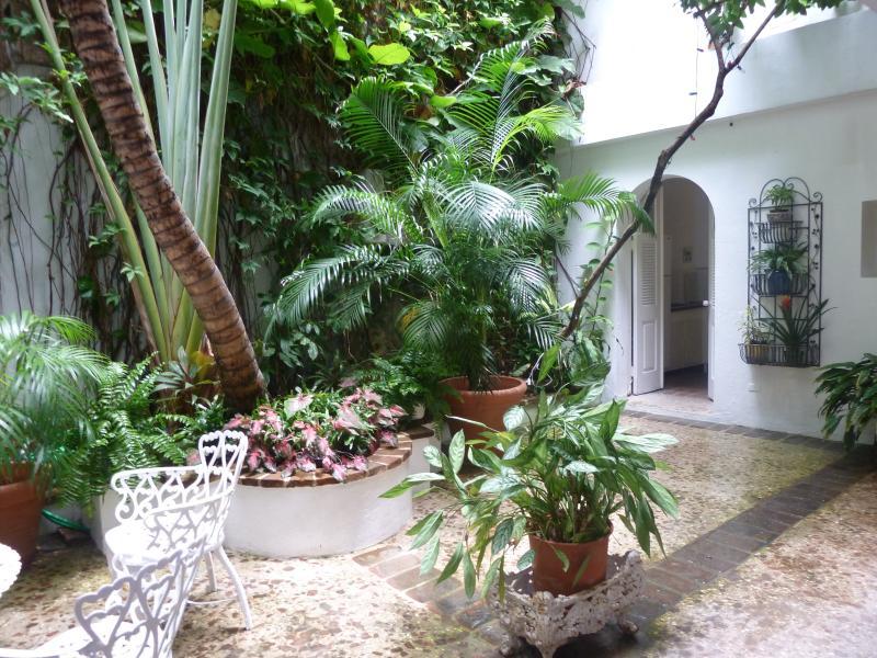 Private Patio - Casa Arana 104 San José - San Juan - rentals