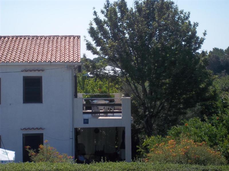 house - 00218PETR A1(4+2) - Petrcane - Petrcane - rentals