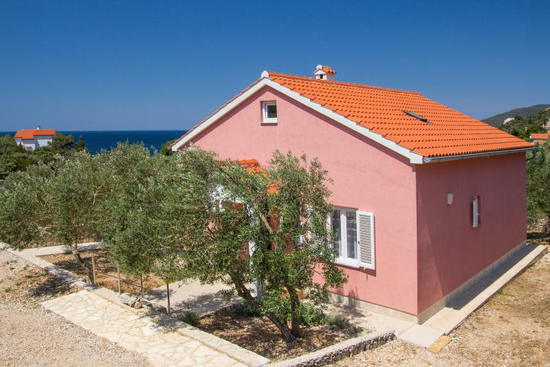 House Dorita - Image 1 - Martinscica - rentals