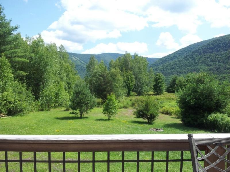 Hunter Mt~REDUCED NOW~Best Deals~5 min to Slopes! - Image 1 - Hunter - rentals