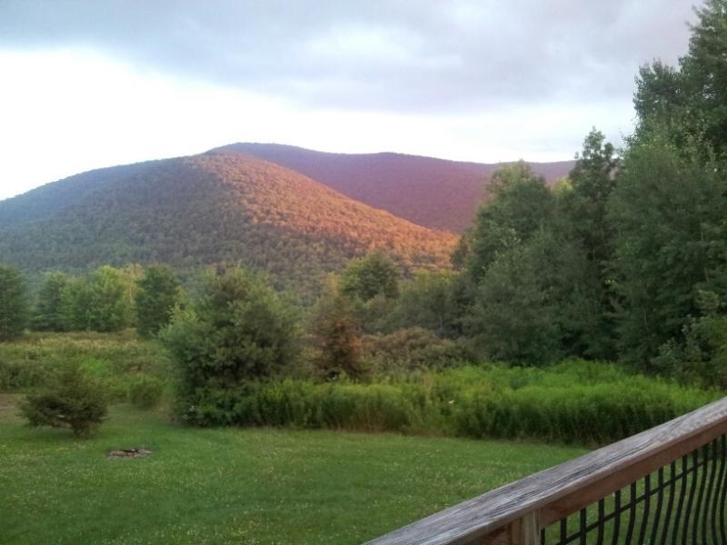Hunter Mt-REDUCED~Amazing Views-Big House! 5 min to Festivals! - Image 1 - Hunter - rentals