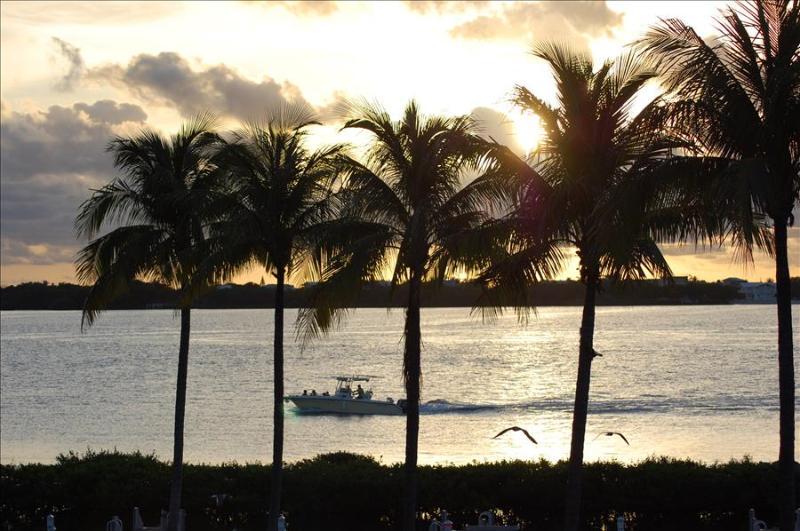 Waterfront luxury Villa (60) with spectacular sunset views and boat slip - Image 1 - Marathon - rentals