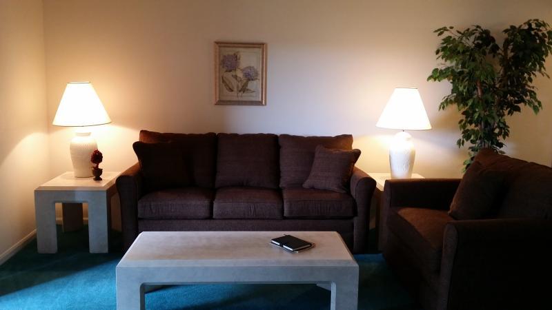 Living Room (New Queen Sofa Sleeper and Twin Sofa Sleeper) - *By Strip*Nice*2 Kings*Sleeps 8*Pools*Hot Tub*Golf - Branson - rentals