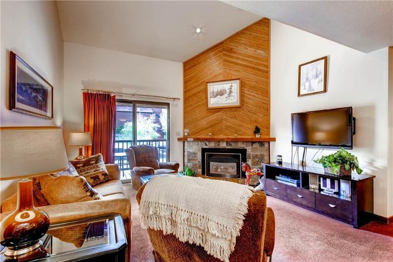 Timber Run 101 - Image 1 - Steamboat Springs - rentals