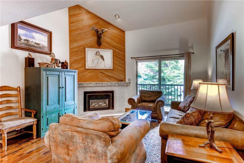 Timber Run 112 - Image 1 - Steamboat Springs - rentals