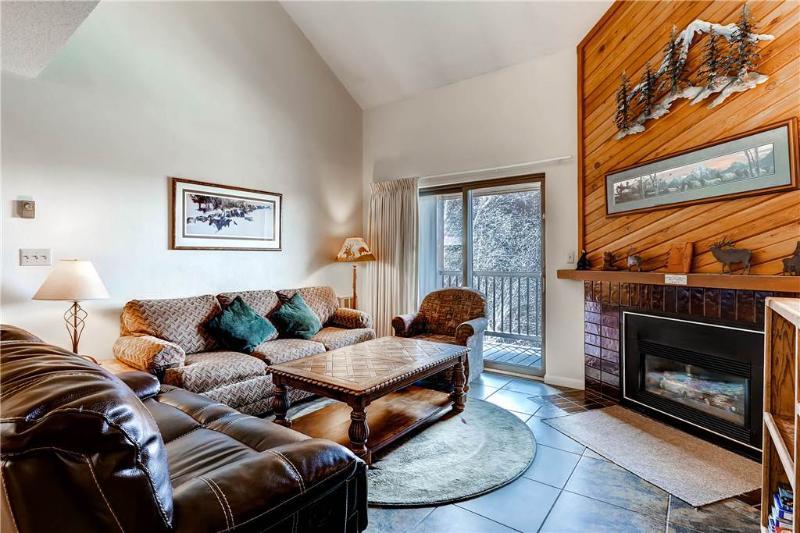 Timber Run 317 - Image 1 - Steamboat Springs - rentals
