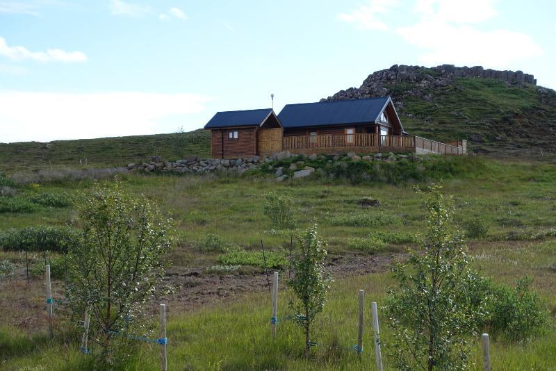 Seen from the gate - Cedar Log Cabin, 4 bed, Golden Circle, Iceland - Selfoss - rentals