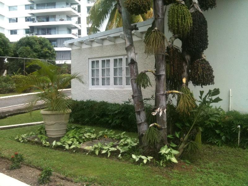 Manor Court Mews Luxury Condo in Kingston, Jamaica - Image 1 - Kingston - rentals