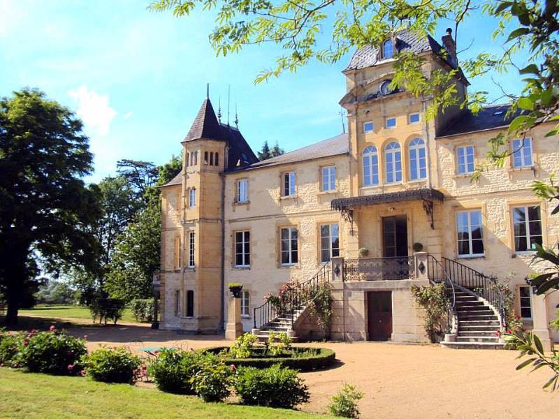 Chateau Fourdevoix - Image 1 - Varennes-Vauzelles - rentals