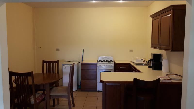 Los Zirecotes #2 - Image 1 - San Ignacio - rentals