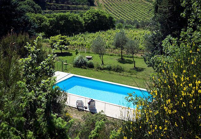 Vaison-la-Romaine Vaucluse, Villa 8p private pool, in the vine yards - Image 1 - Vaison-la-Romaine - rentals