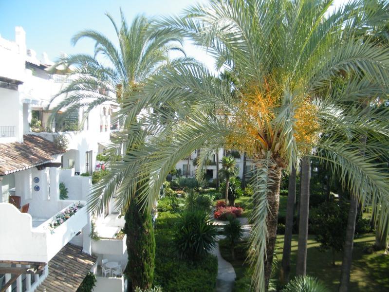 La Alcazaba 542 - Image 1 - Marbella - rentals