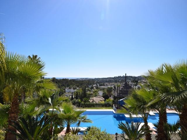 Las tortugas 23148 - Image 1 - Marbella - rentals