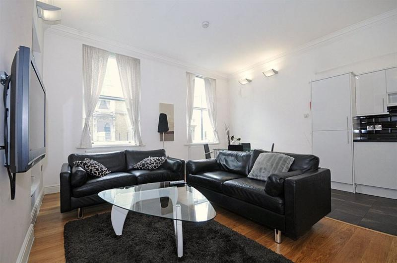 Deluxe 1 bed Next to HYDE PARK Central London - Image 1 - Madrid - rentals