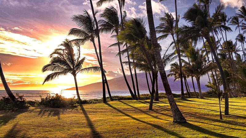 Beautiful Sunset from Villa 2 - BEACHFRONT LUXURY ALOHA VILLA #2, CHILDREN WELCOME - Kihei - rentals