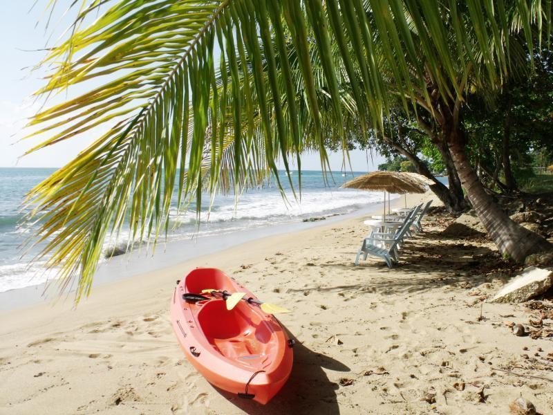 Your condo beach - Sea View Beachside condo sleeps 9 across the beach - Rincon - rentals