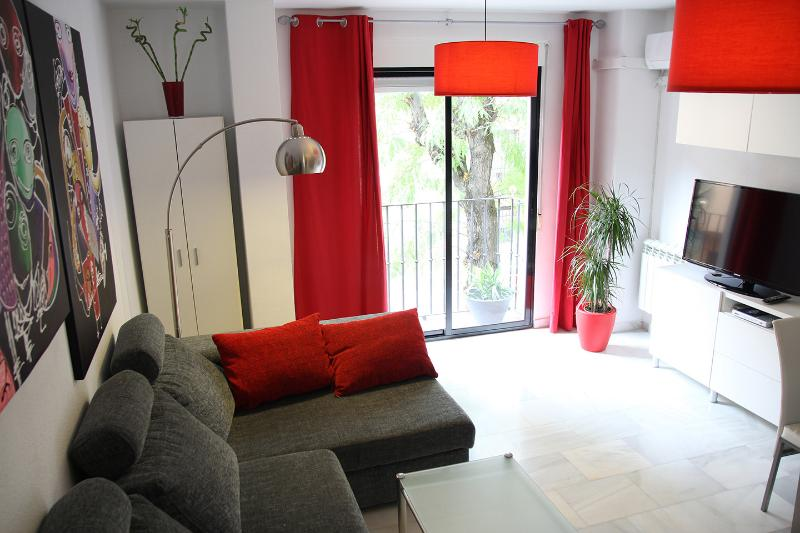 Flat at the foot of the Albaicín - Image 1 - Granada - rentals