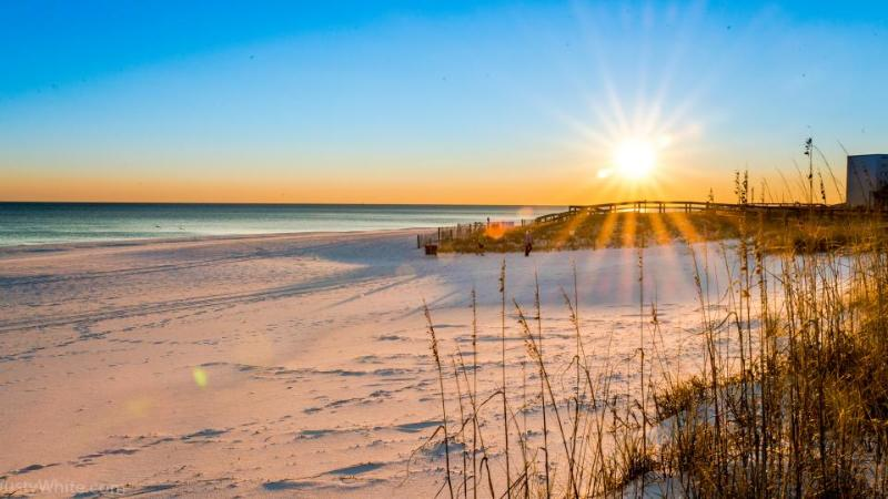 Oceanfront house w/private beach access - dog okay, stunning beach views! - Image 1 - Destin - rentals