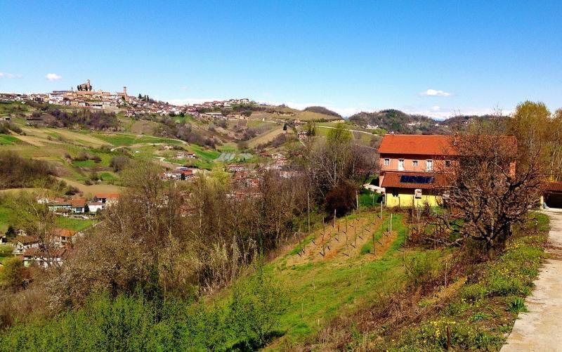 La Terrazza farmstead - LA TERRAZZA I - FARMSTEAD IN ROERO ( Pool at Exclusive Country Club) - Cisterna d'Asti - rentals