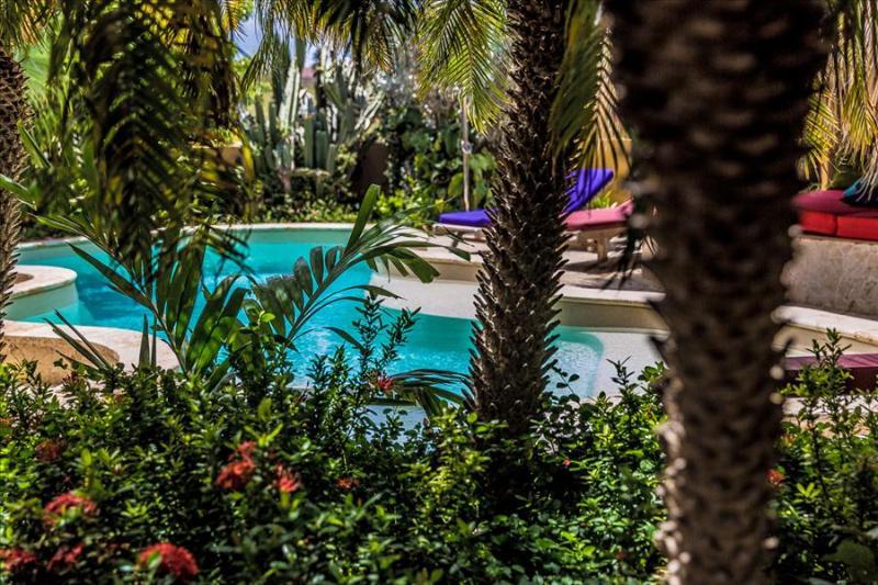 Apartment Dolfein in Ocean View Villas - On the ground floor with private patio - Image 1 - Kralendijk - rentals