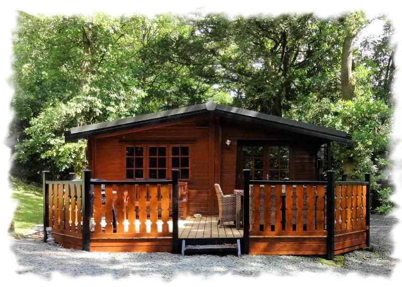 Blelham Tarn luxury log cabin sleeps 4 non-smokers - Blelham Tarn (Luxury Log Cabin) - Skelwith Bridge - rentals