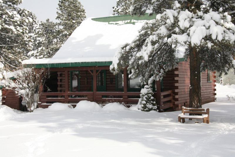 1 Little Rabbit is a charming, 3 bedroom, rustic cabin rental in Pagosa Springs. - Image 1 - Pagosa Springs - rentals