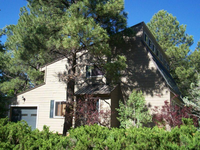 Street View Of the House - 64 Fairway Place - Pagosa Springs - rentals