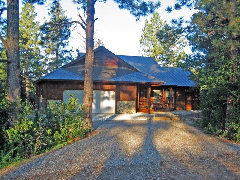 Capitan is a beautiful vacation home in Pagosa Springs backing up to the National Forest and Martinez Canyon. - Image 1 - Pagosa Springs - rentals