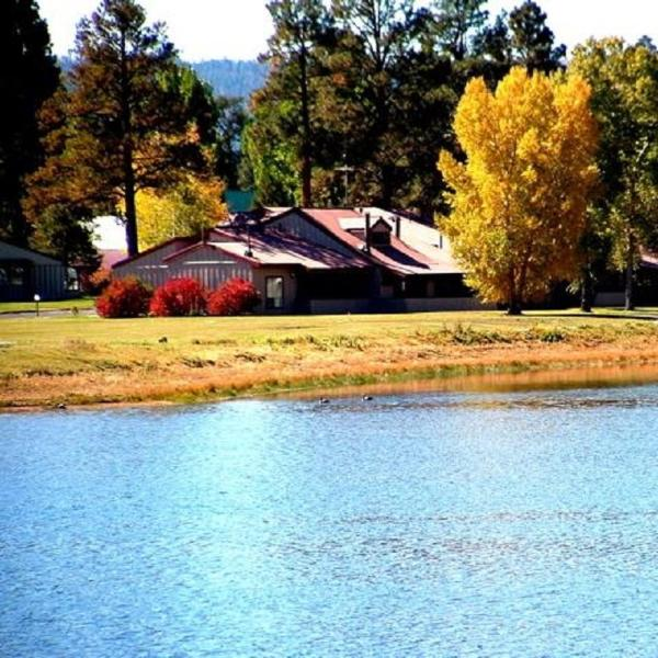 Lodge 3002 is a cozy, pet-friendly vacation condo with beautiful views of the - Image 1 - Pagosa Springs - rentals