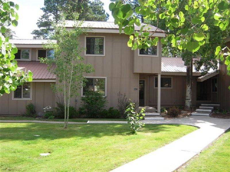 Cherish a relaxing Pagosa Springs vacation in this beautifully decorated condo. - Image 1 - Pagosa Springs - rentals