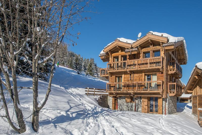 Chalet Ingrid - Image 1 - Courchevel - rentals