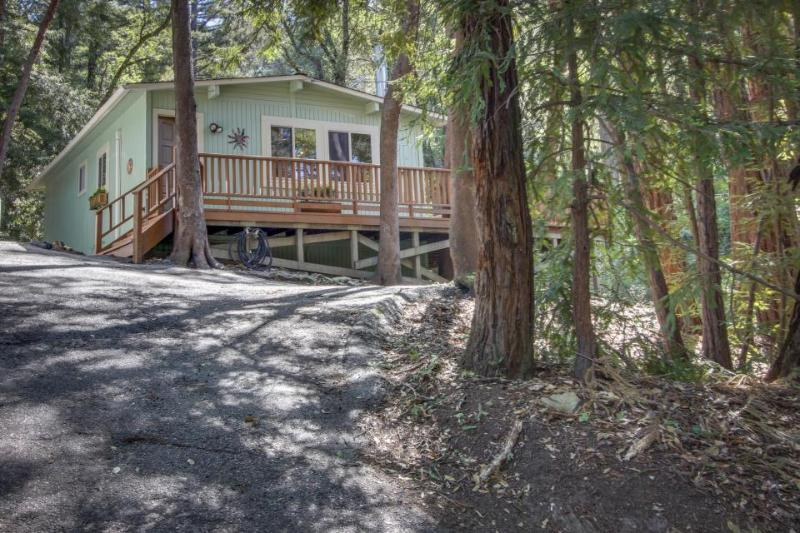 Comfortable, updated cabin in the woods near parks and trails! - Image 1 - Felton - rentals