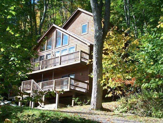 Cinnamon Fern Chalet - 441 Northpoint Way - Image 1 - Canaan Valley - rentals