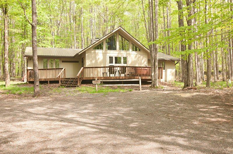 Timber Haus - 43 Bobcat Road - Image 1 - Canaan Valley - rentals