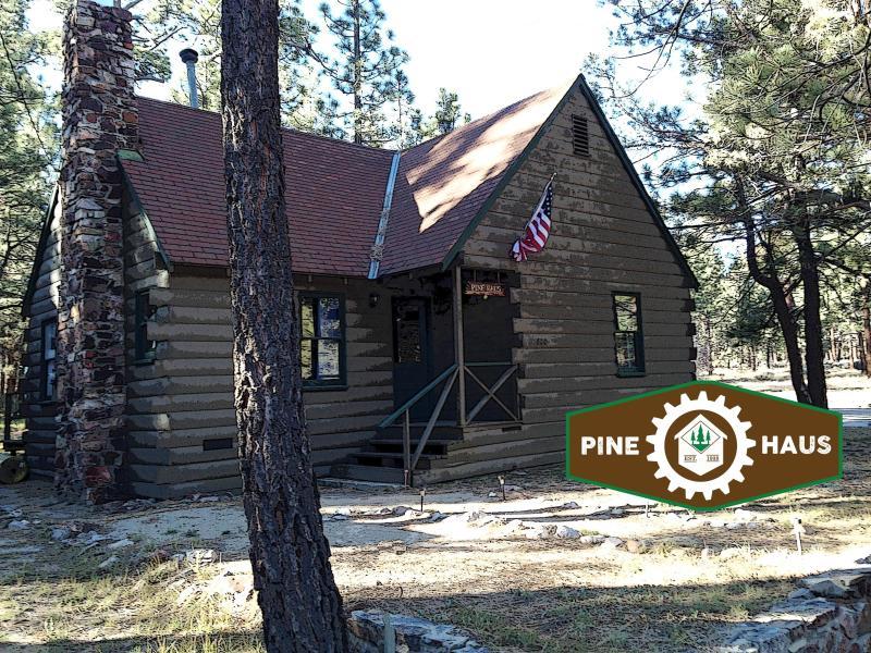 Pine Haus - Image 1 - Big Bear City - rentals