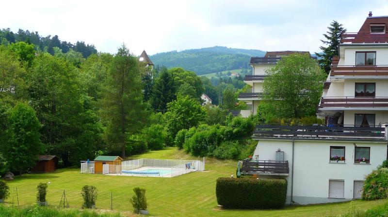 Studio en montagne avec piscine et sauna - Image 1 - Le Hohwald - rentals