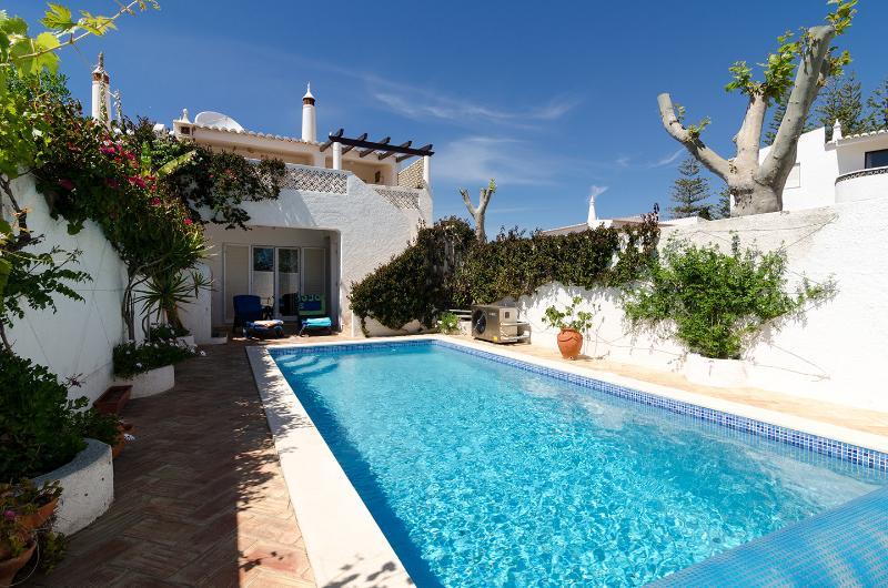 Swimming Pool - Villa Mayer-4440/AL - Luz - rentals