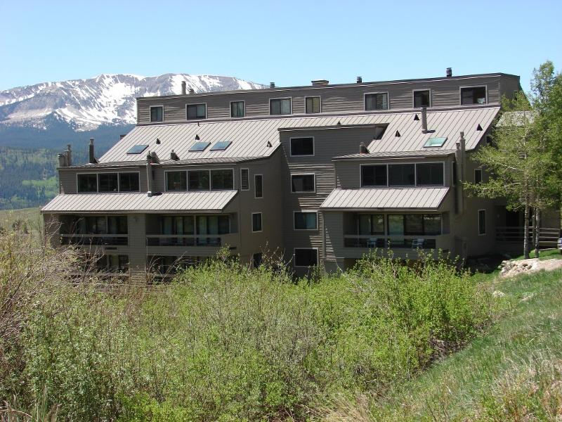Awesome 1 BR!  6th nt free.  Walk to the slopes.  Hot tub! - Image 1 - Crested Butte - rentals