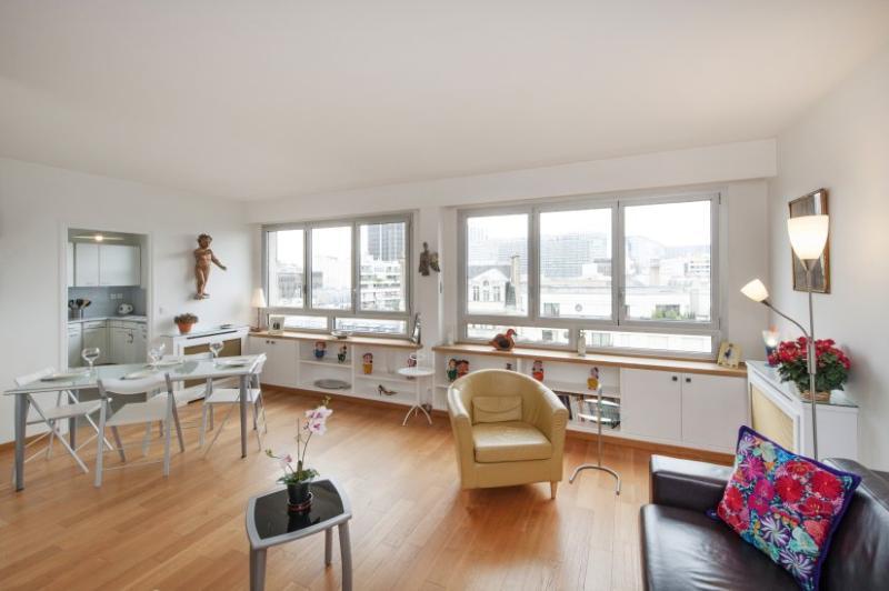 Living room - One bedroom Rooftop view  Paris Montparnasse district (559) - Paris - rentals