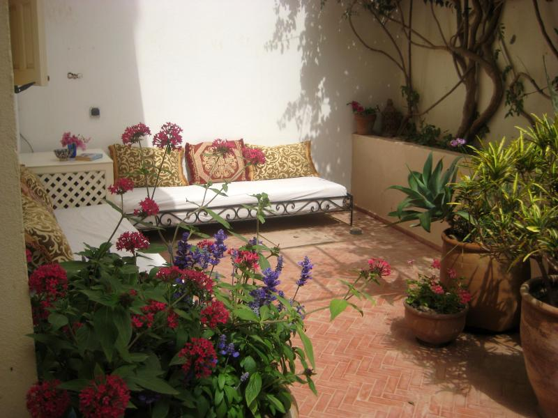 A beautiful spot in the garden - Tifawin Home & Garden, Mirleft Centre - Mirhleft - rentals