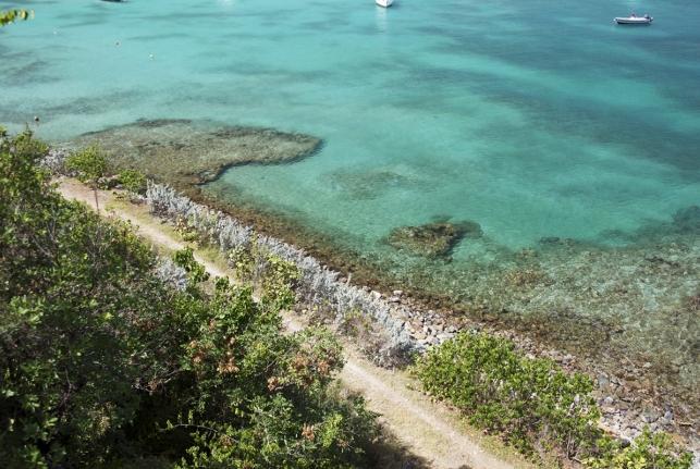 Villa Reef Point St Barts Rental Villa Reef Point - Image 1 - Saint Jean - rentals