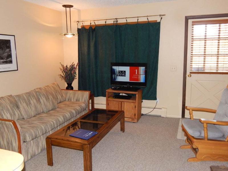Hi Country Haus Unit 1421 - Image 1 - Winter Park - rentals