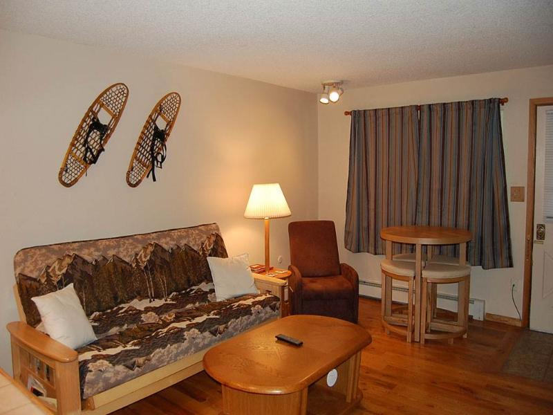 Hi Country Haus Unit 1508 - Image 1 - Winter Park - rentals