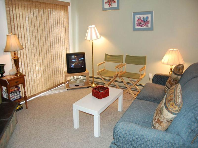 Meadow Ridge Court 20 Unit 10 - Image 1 - Fraser - rentals