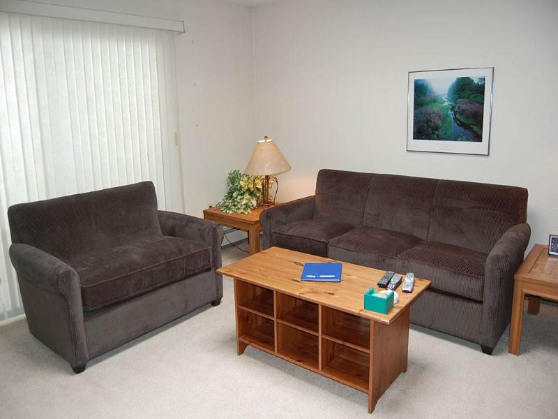 Hi Country Haus Unit 2214 - Image 1 - Winter Park - rentals