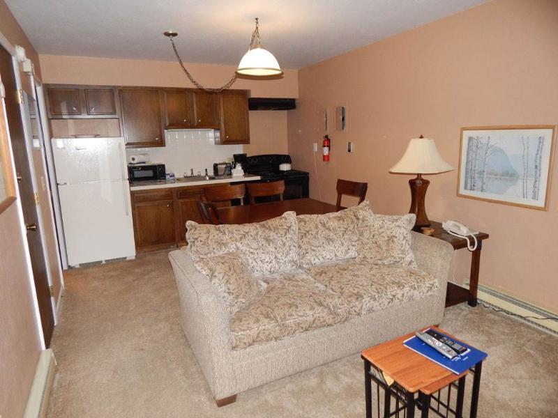 Hideaway Village Columbine 3 - Image 1 - Winter Park - rentals
