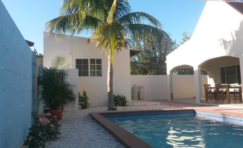 large pool in the backyard - Casa Chibichibi - Aruba - rentals