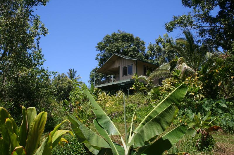 The cottage sits on a ridge, built on stilts overlooking the jungle canopy. - Private Jungle Cottage; Waterfalls, Natural Pools - Haiku - rentals