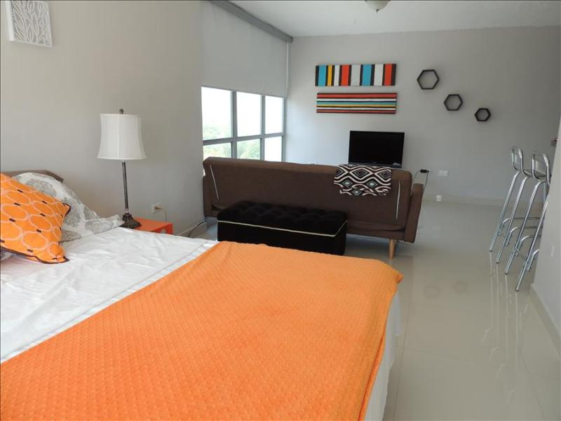 White Sands - Condo Studio Apartment - Image 1 - San Juan - rentals